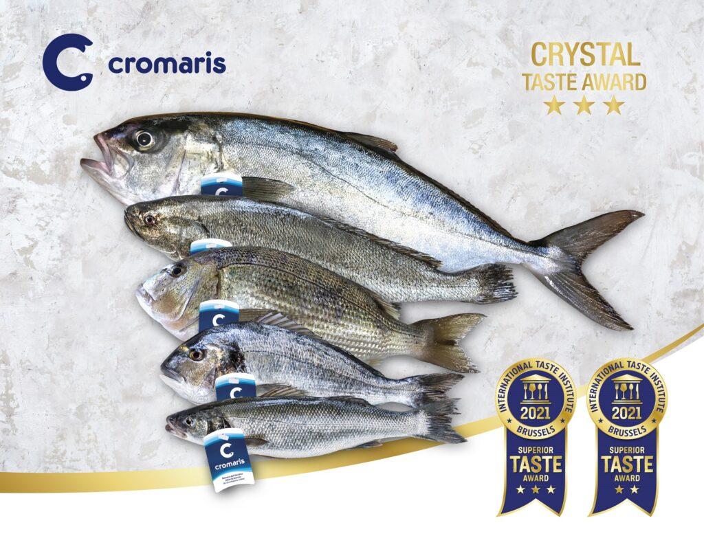 Unique taste of Cromaris fish